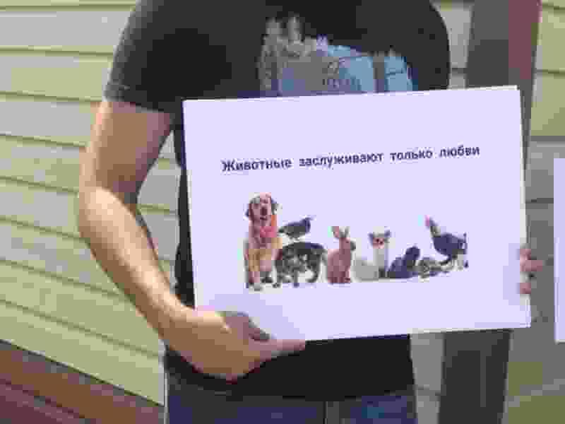 «Этот памятник охраняется Конституцией», «Мой питомец под защитой Конституции», «Конституция – друг животных». Какими лозунгами в Тамбовской области празднуют принятие поправок