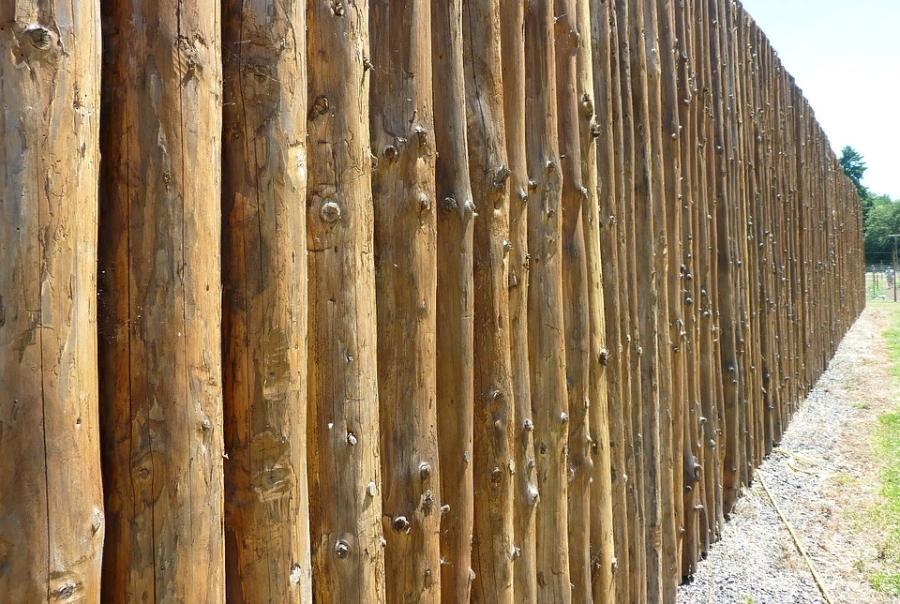 Под Тамбовом хотят построить деревянную крепость