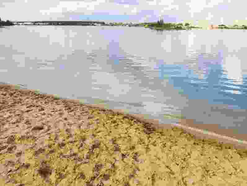Роспотребнадзор признал 12 пляжей региона непригодными для купания
