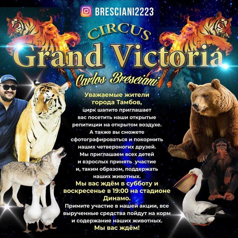 Цирк-шапито на «Динамо», которому всем миром помогли прокормить животных, приглашает тамбовчан на репетиции