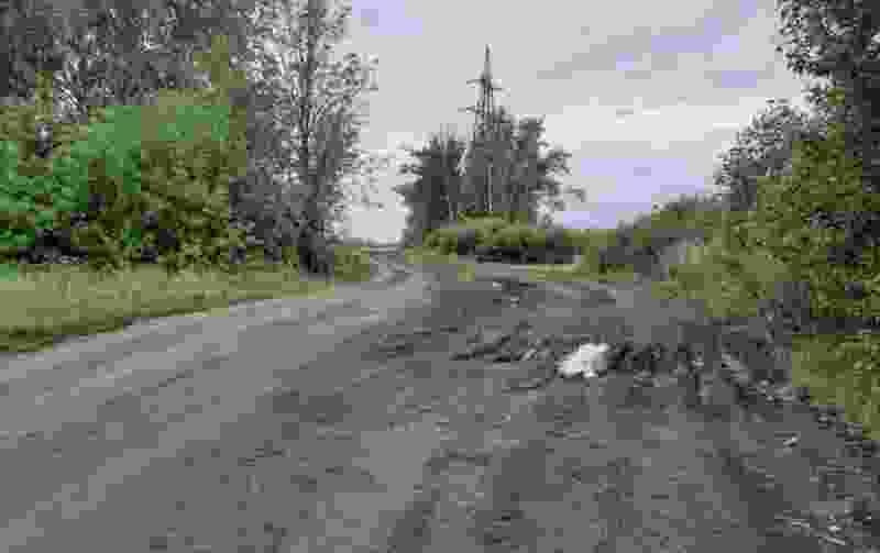 В Моршанске разыскивают свидетелей ДТП со смертельным исходом
