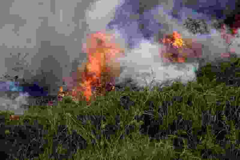 В регионе установили высочайший класс пожарной опасности
