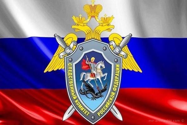 В России отмечается День сотрудников органов следствия