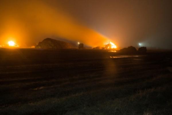 В Тамбовской области молодой человек сжег 180 тонн сена
