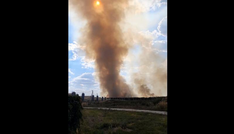 В Тамбовской области сохраняется чрезвычайно высокая пожароопасность и продолжают гореть поля: видео
