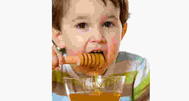 Вирус не пройдёт! Скоро в Тамбове состоится традиционная ярмарка мёда