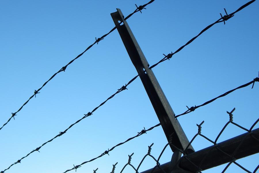 Жителя Моршанского района признали виновным в убийстве