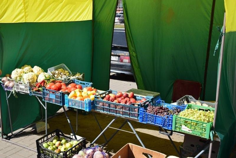 Администрация Тамбова не нашла нарушений санитарных норм на микрорынке на севере города