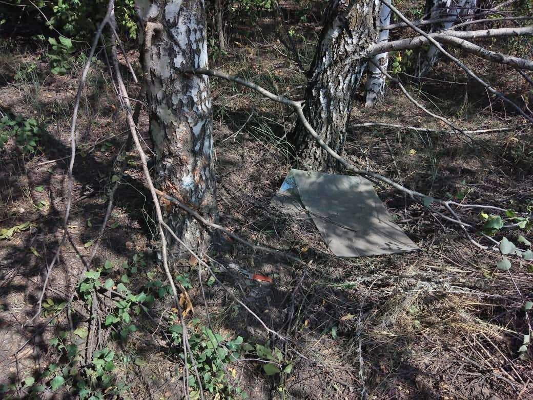 """Автоледи в Уваровском районе не справилась с управлением и """"вылетела"""" в кювет"""