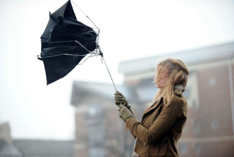 МЧС предупреждает тамбовчан о штормовом ветре 28 августа