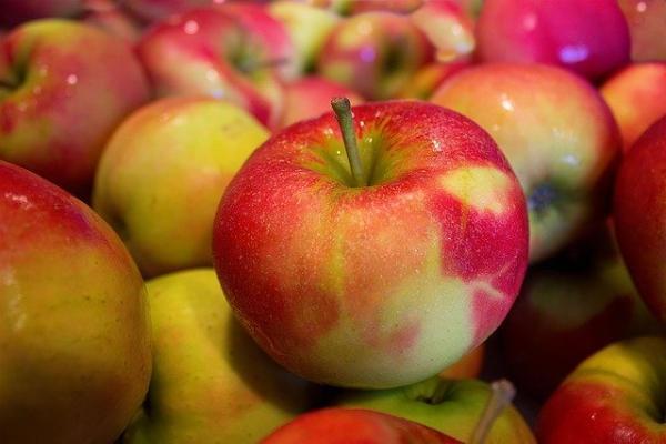 Тамбовчане отмечают Яблочный Спас