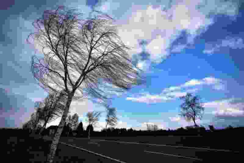 В ближайшие часы в регионе ожидается сильный ветер