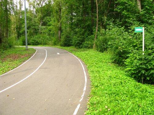В Тамбове будут ремонтировать лыжероллерную трассу парка Дружбы