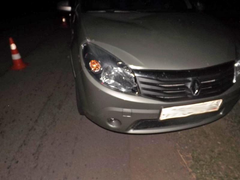 В Тамбовском районе водитель иномарки сбил пешехода