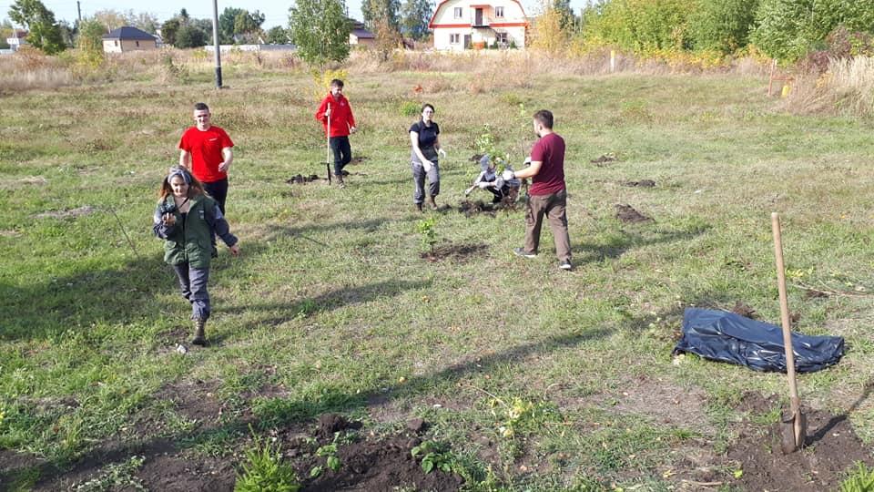 Активисты ОНФ в Мичуринске высадили саженцы ели и дуба у памятника зенитчицам