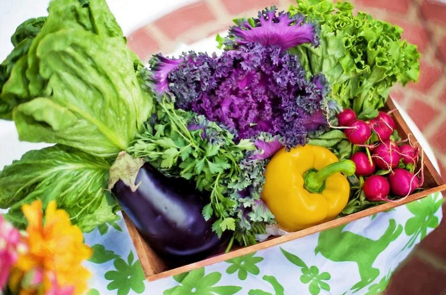 Диетолог перечислила самые полезные и недорогие продукты