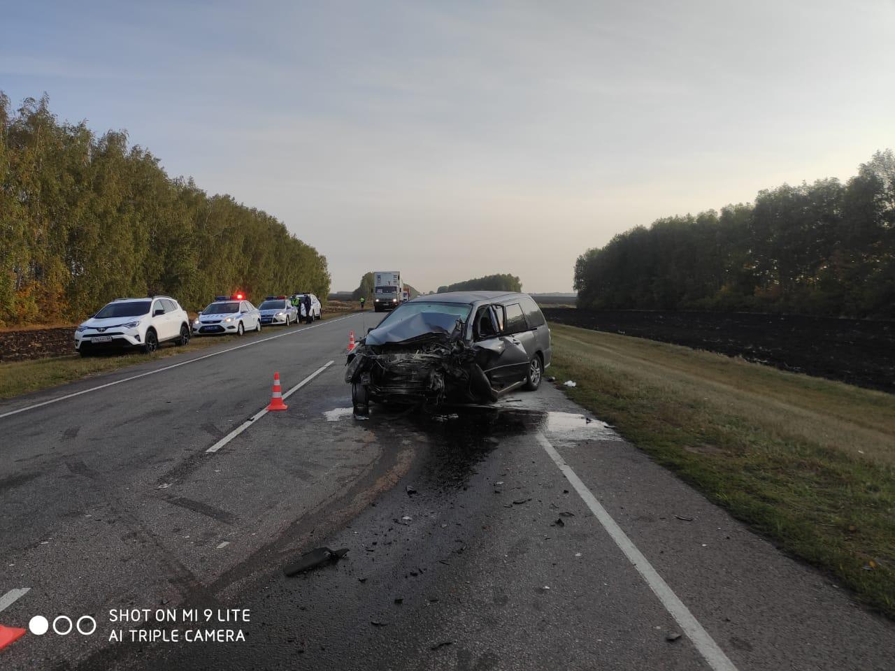 На трассе в Тамбовском районе в ужасном ДТП погибли 3 человека, ещё 4 госпитализированы с травмами