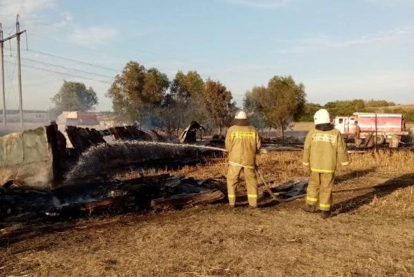 На животноводческой ферме под Тамбовом случился крупный пожар