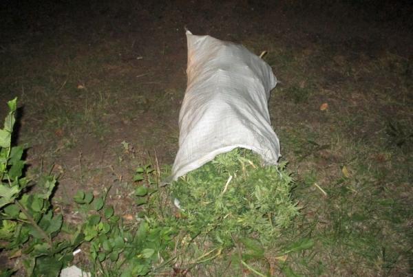 Полицейские задержали тамбовчанина с мешком наркотиков