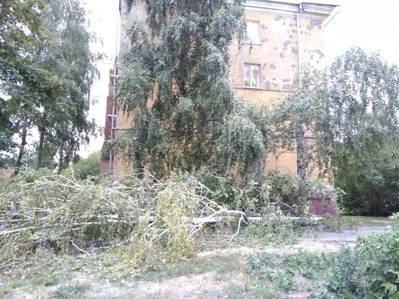 Самый разрушительный за последние годы ураган обрушился на Тамбовскую область