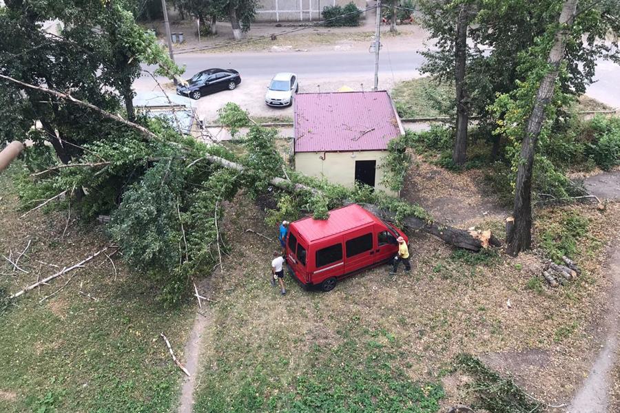Стали известны последствия урагана в Тамбовской области