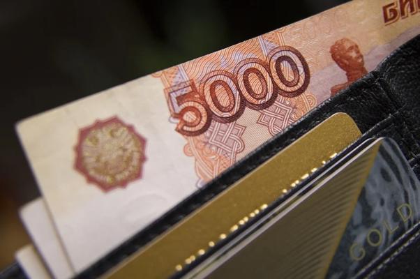 Тамбовской области выделят 655 тысяч рублей для ежемесячных выплат на детей