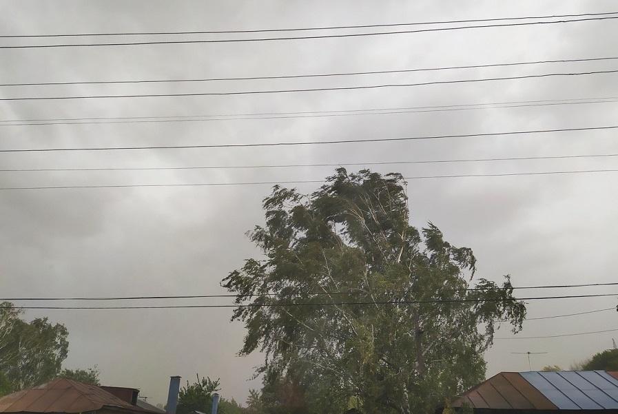 В ближайшие часы в Тамбовской области ожидаются грозы и град