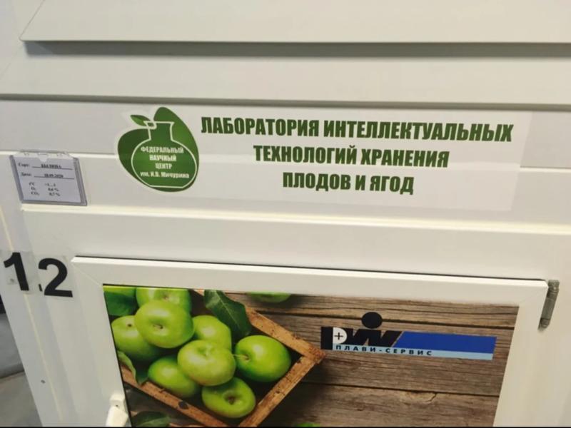 """В Мичуринске начало работать """"фруктохранилище будущего"""""""