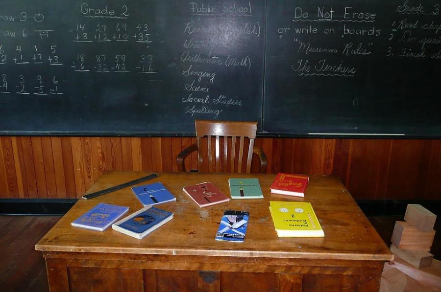 В отдельных классах 15 корпусов школ Тамбова приостановлен образовательный процесс
