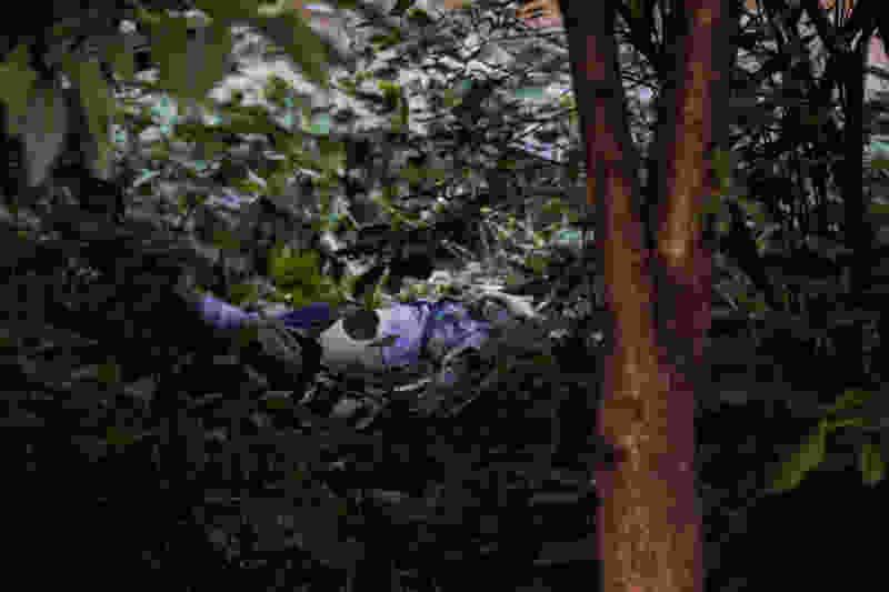 В Тамбовской области в кустах на берегу реки охотник нашел тело мужчины, который пропал больше месяца назад