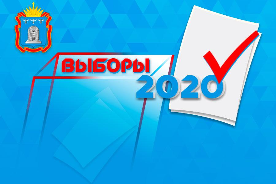 Выборы-2020: что нужно знать тамбовским избирателям