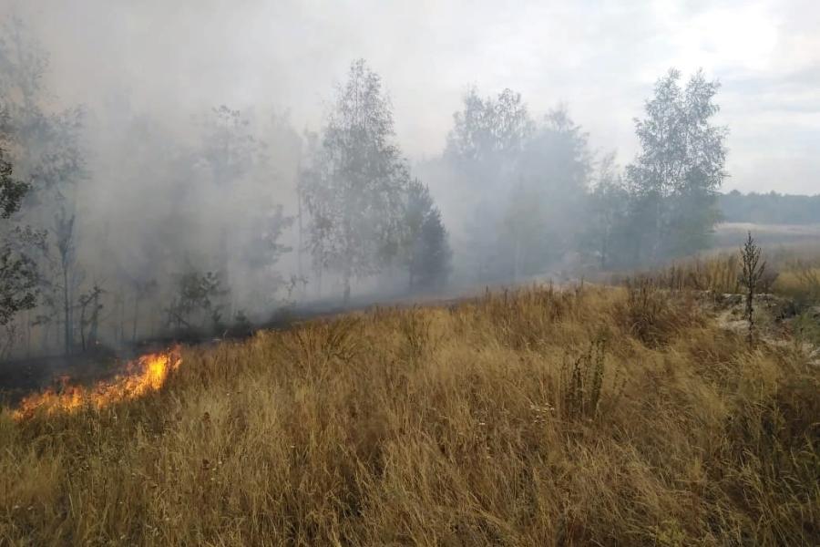 За сутки в Тамбовской области произошло 63 пожара
