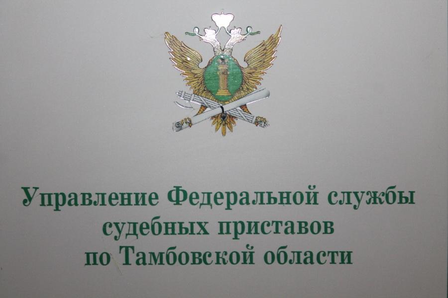 Чтобы не лишится земельных участков, тамбовчанин возместил ущерб на сумму полтора млн рублей