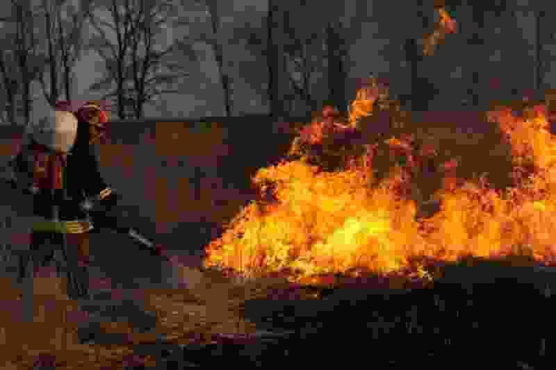 Из-за высокой пожароопасности тамбовчанам запрещено посещать леса