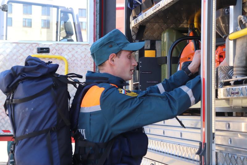 Пожарные МЧС отправились в Воронежскую область помогать тушить лесные пожары