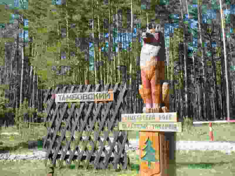 Тамбовский волк претендует на звание самой необычной скульптуры России