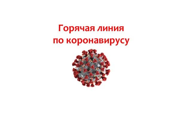 """В лечебных учреждениях области заработали """"горячие линии"""" для консультаций больных коронавирусом"""