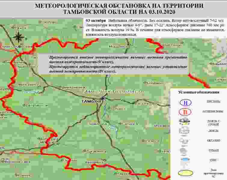 В лесах Тамбовской области почти на месяц ввели особый противопожарный режим