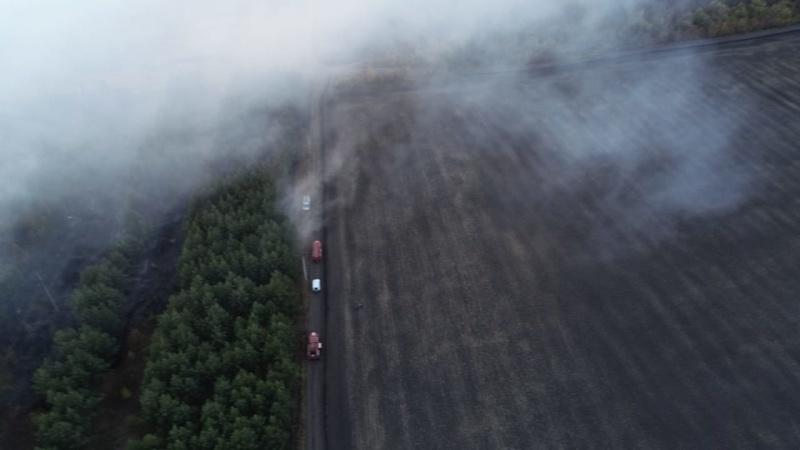 В тамбовской области произошло два крупных лесных пожара