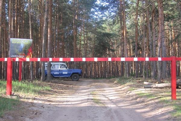 В Тамбовской области введено ограничение на пребывание в лесах
