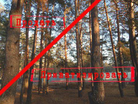 Горадминистрация пытается «отменить» разрешение на строительство в Пригородном лесу