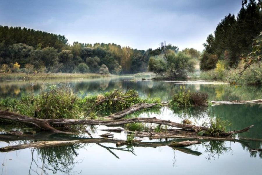Реку Лесной Тамбов расчистит компания из Ставропольского края