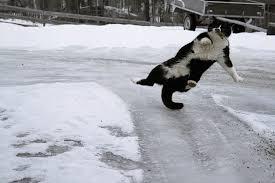 Тамбовчан в выходные ждёт снег и гололёд