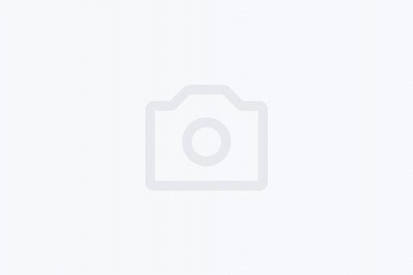 ВКурске всквере «Студенческий» высадили 9голубых елей