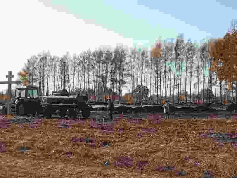 В селе Новосеславино Первомайского района посадили 200 кедров