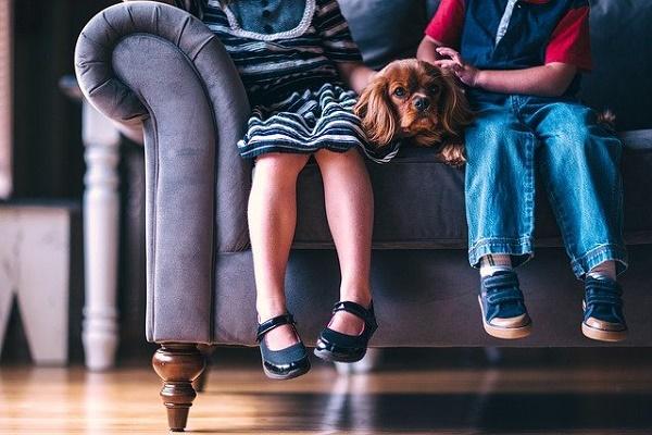 В СФ призвали отложить законопроект об ускоренном изъятии детей