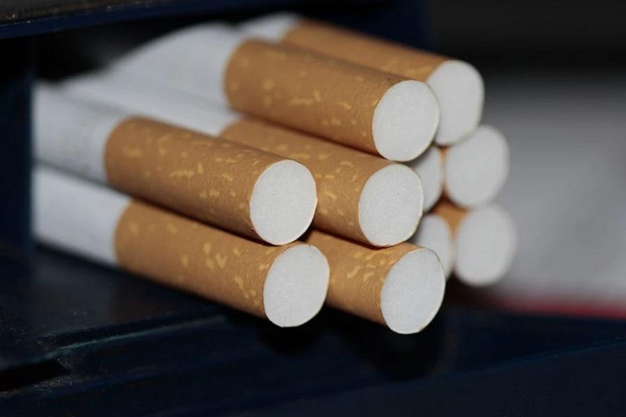 Госдума приняла закон о запрете перевозить более 10 пачек сигарет
