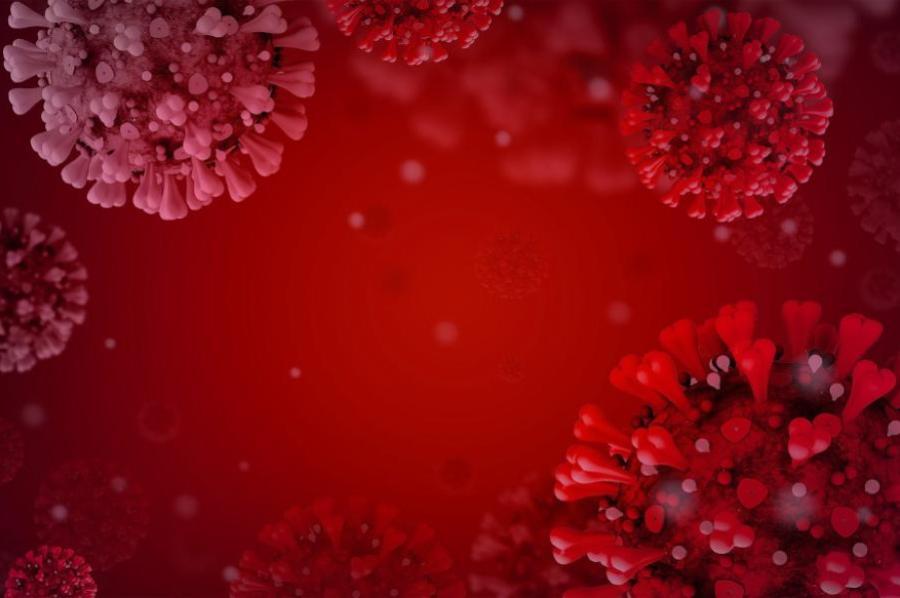 Микробиолог рассказал о людях с иммунитетом к коронавирусу