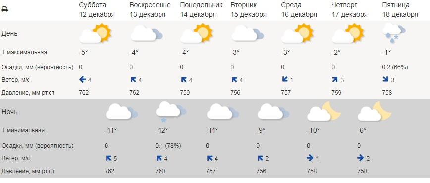 Морозы в Тамбовской области будут понемногу смягчаться