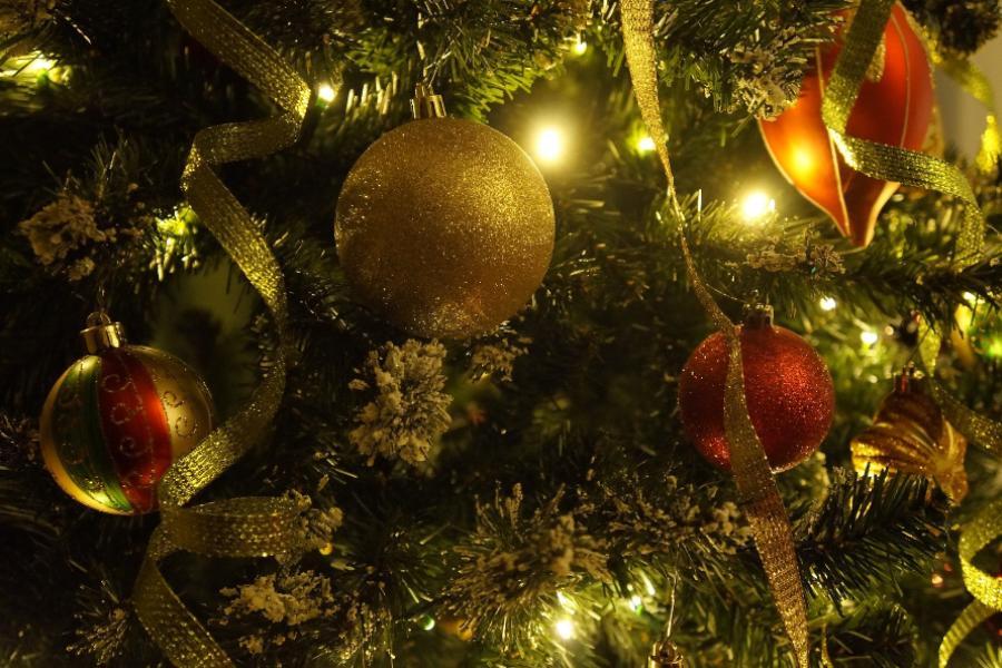 В Парке культуры Тамбова ожидается зимнее торжество